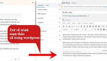 Trở về trình soạn thảo cũ trong wordpress
