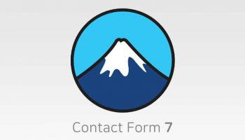 Contact Form 7 kiểm tra số điện thoại